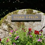 Ferm Y Felin Sign